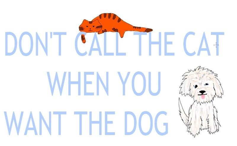 Don't call the cat when you want the Dog!